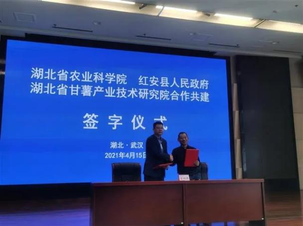 湖北省甘薯产业技术研究院